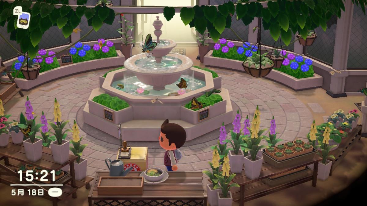 「蝴蝶花園」