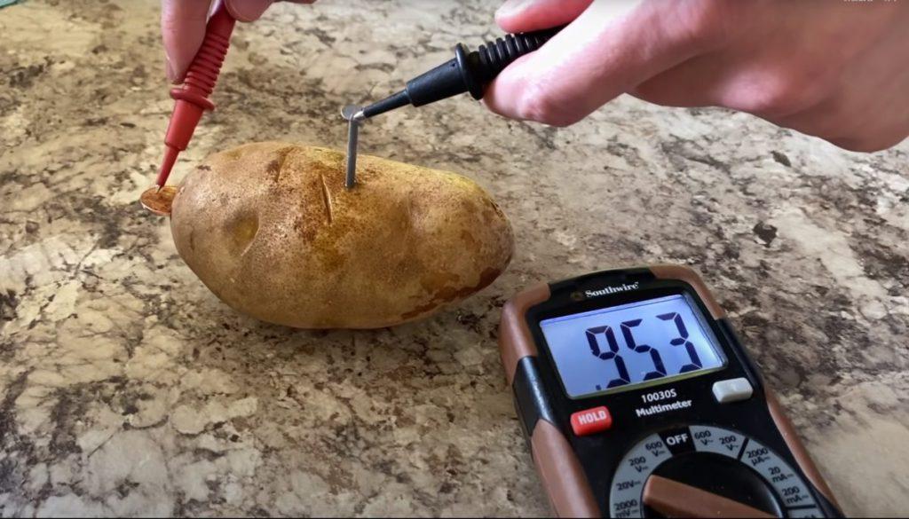 雖然馬鈴薯能夠發電,但只能提供極低的電量。
