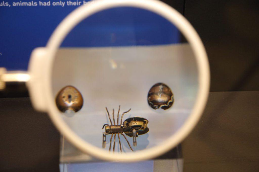 機械蜘蛛比手指還細,設計精緻。