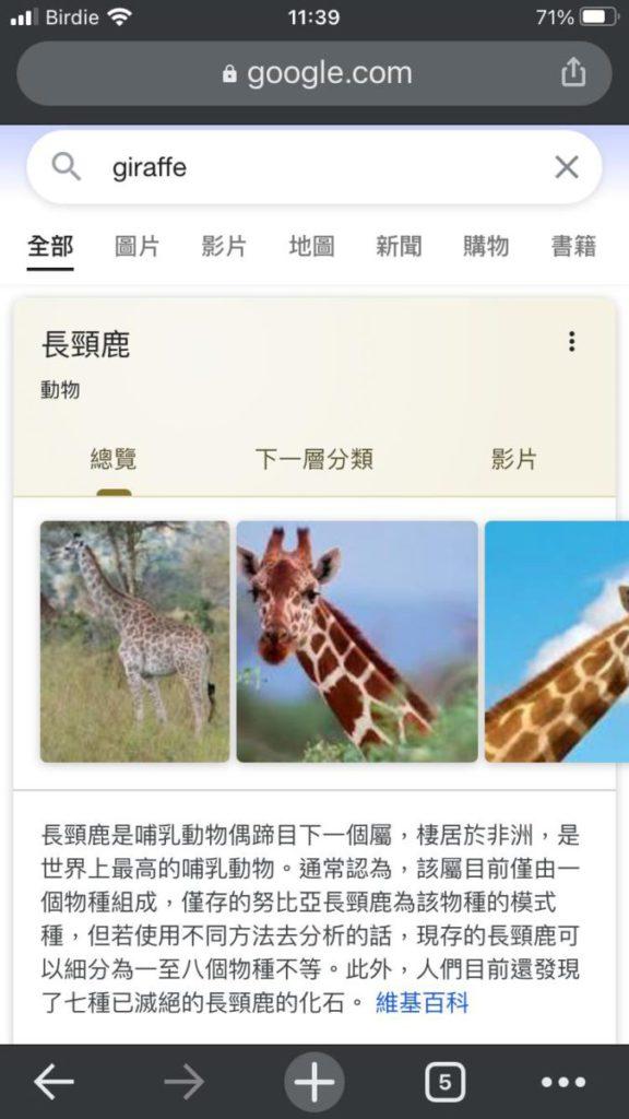 於第二代 iPhone SE 輸入 Giraffe 未有如期顯示結果。