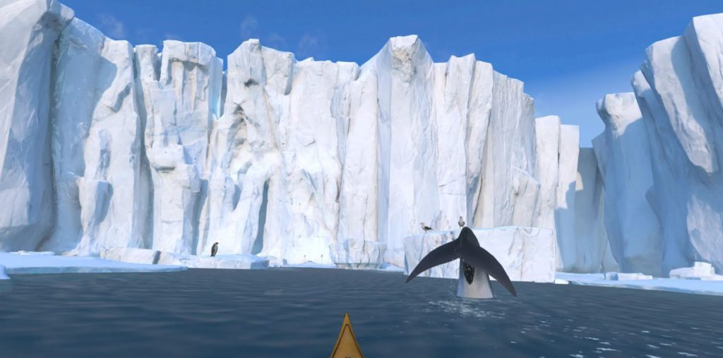可以在南極爬獨木舟觀看冰山和鯨魚。