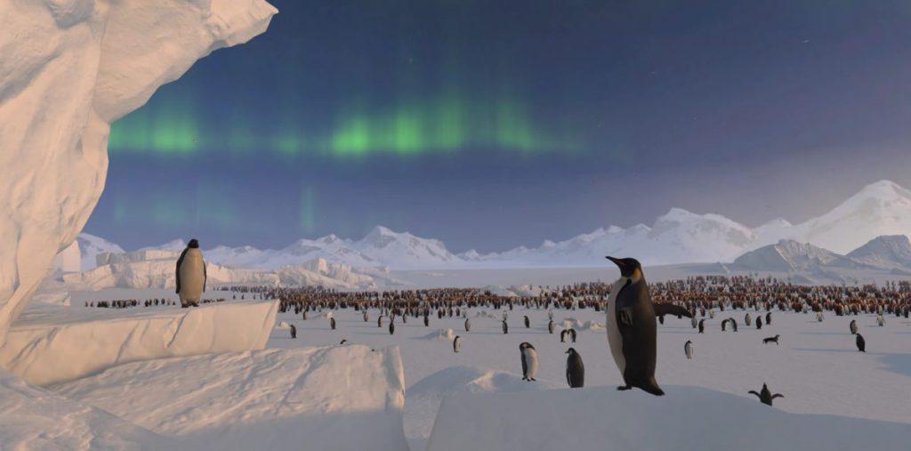 在極光下欣賞企鵝群。