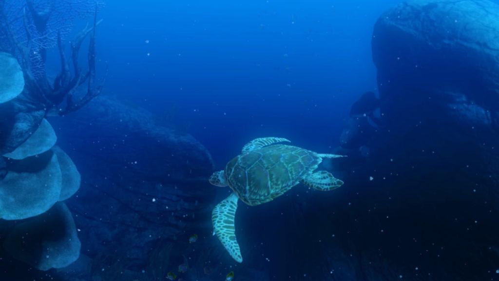 站在深海的珊瑚嶕觀看海龜游泳的美態。不過主角原來不是牠⋯⋯