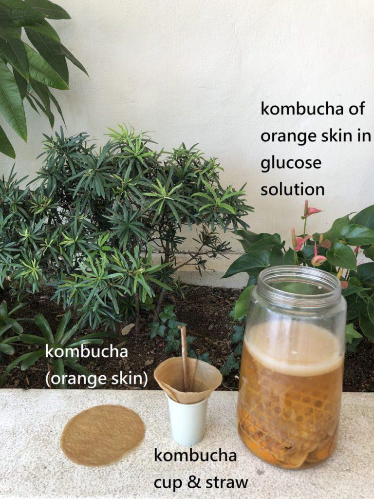 利用果皮的提煉可製造出各類如飲管的環保用具。
