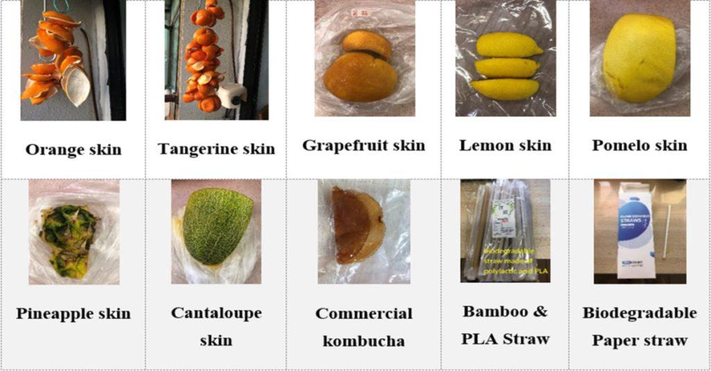 實驗過程中需分析不同的果皮找出最合用的水果。