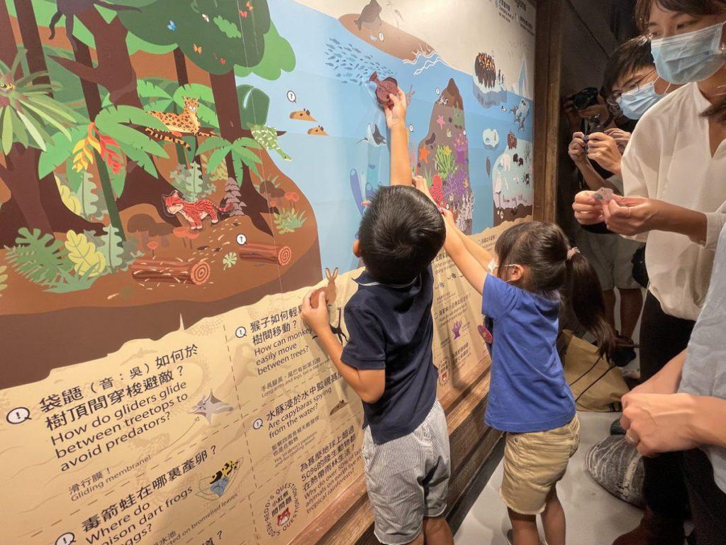 在「小小隱身專家」區域內,小朋友能認識大自然和動物各方面的知識,為動物尋找最佳棲息地。