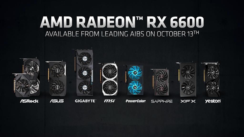 首輪發佈的 RX 6600 非公版顯示卡有 ASRock 、 ASUS 、 Gigabyte 、 MSI 、 Sapphire 、 XFX 及 Yeston 等。